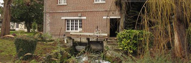 Le Moulin de la Halle